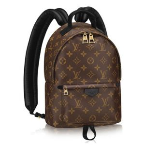 authentic Palm Springs Backpack PM Monogram bag